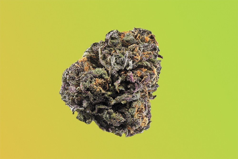 One budtender's go-to strain for dealing with anxiety is Granddaddy Purple.