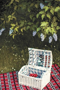 June 18 is International Picnic Day.