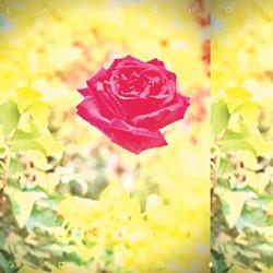 artsculture4-2-94f6d8189a68ea27.jpg