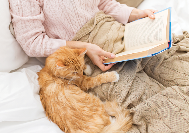 Nestle into a winter reading session with a furry companion and warm blanket.
