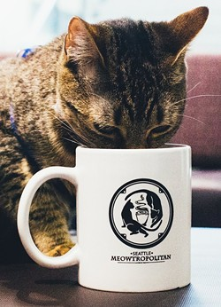 The Seattle cat cafe could open by the end of October. - SEATTLE MEOWTROPOLITAN FACEBOOK