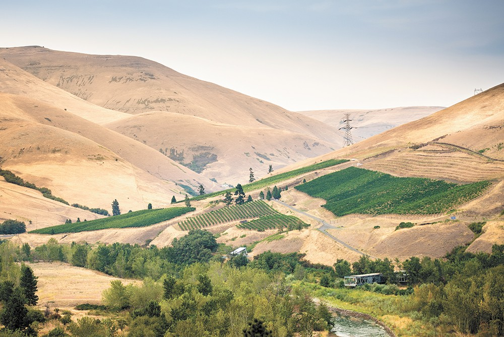 Colter's Creek Vineyard and Winery in Juliaetta, Idaho.