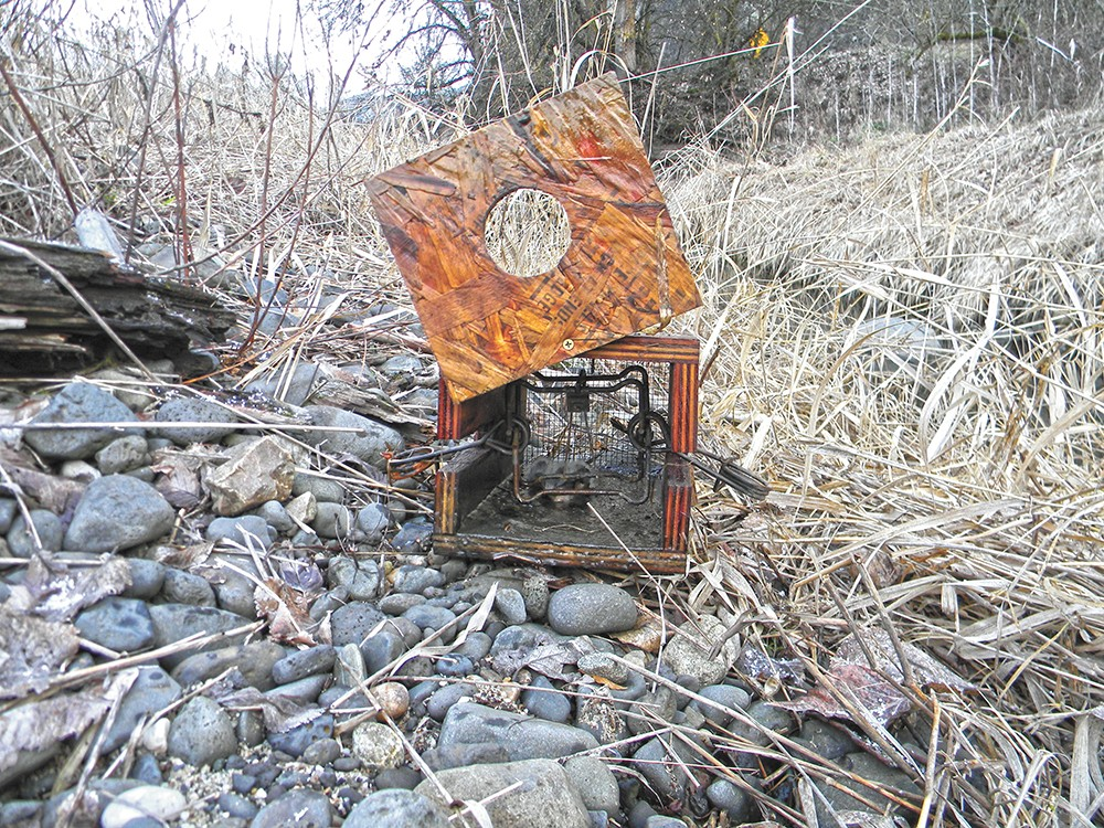An enclosed trap baited with beaver meat for a mink. - JAKE THOMAS