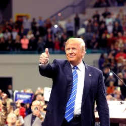trump_thumbs_up_low_res_preview.jpg