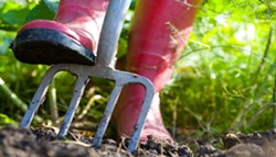 10-tips-to-spring-gardening-on-the-cheap.jpg