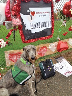 Debbie and Chuck Wing's Irish Wolfhound, Keeva, responded to the Marysville school shooting in 2014.