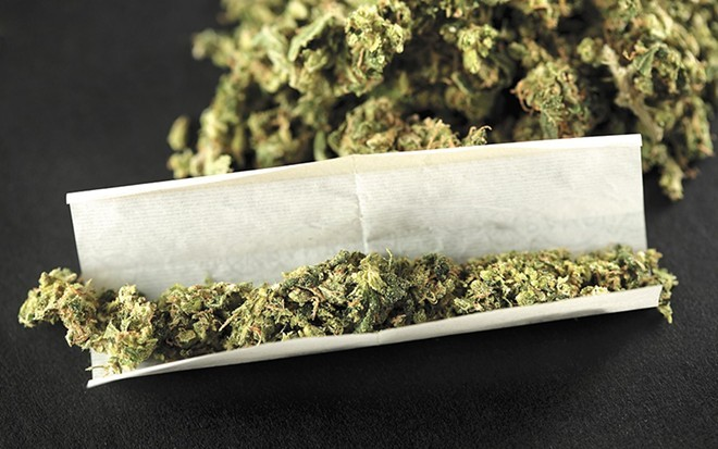 """Are people who smoke marijuana regularly less stressed than those who don't? A new WSU study says """"quite possibly."""""""
