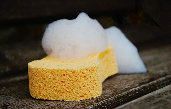 sponge-1976828_640.jpg
