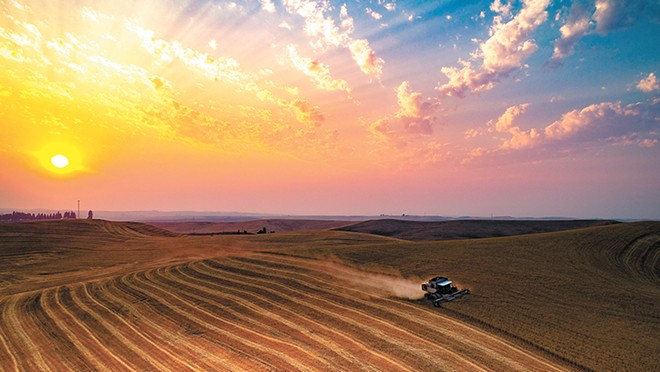"""Jared Cocking drives his combine through his Palouse farm. """"That evening the skies were smoky from the many fires in the northwest,"""" comments Eric Weitze. - ERIC WEITZE PHOTO"""