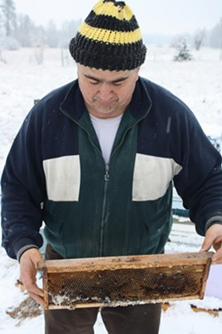 Local beekeeper Will Olson says some of his fellow beekeepers have put GPS trackers in hives to prevent theft.