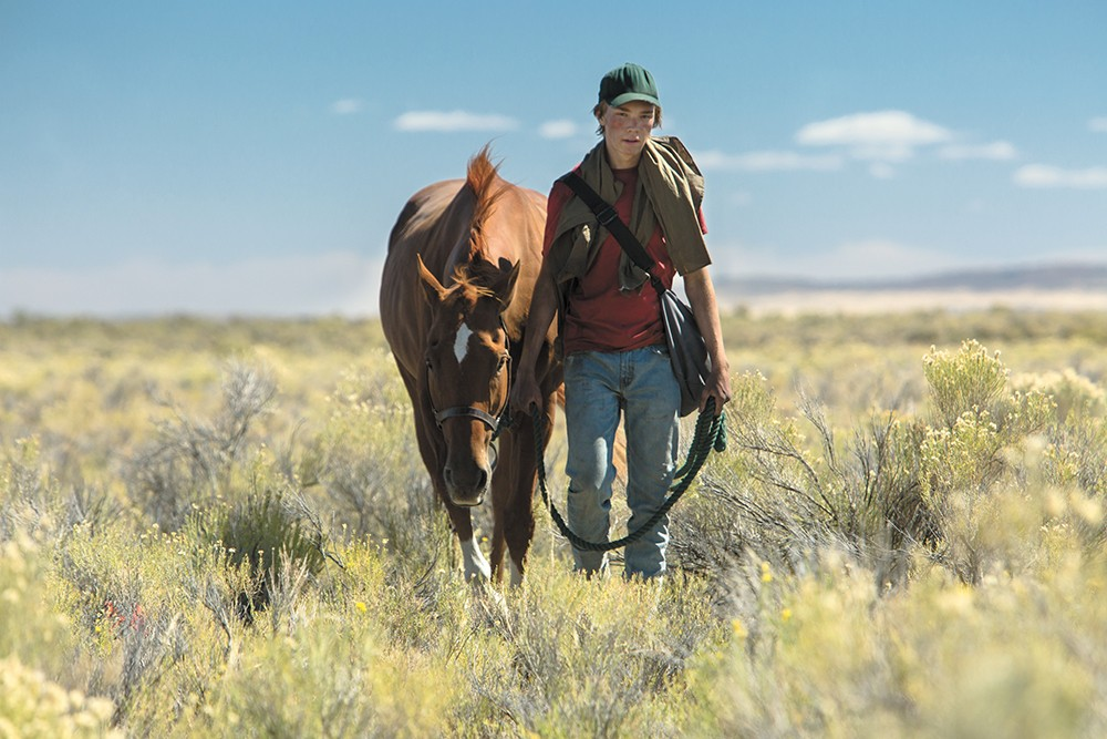 Lean on Pete is a much darker film than it initially appears. - LEAN ON PETE