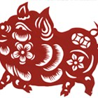 Celebrating the Chinese zodiac Year of the Pig with a primer on all things porcine