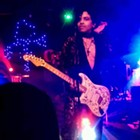 Erotic City (Prince Tribute Band)