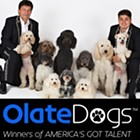 The Olate Dogs