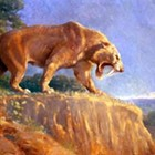 Saber-Toothed Cats: Evolution and Ecology of a Mammoth Predator