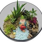 Plant Nite: Gnome Succulent Terrarium