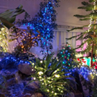 Gaiser Conservatory Holiday Lights