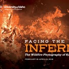 Facing the Inferno: the Wildfire Photography of Kari Greer