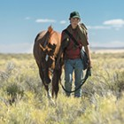 A runaway teenager and his stallion encounter harsh Western landscapes in Lean on Pete