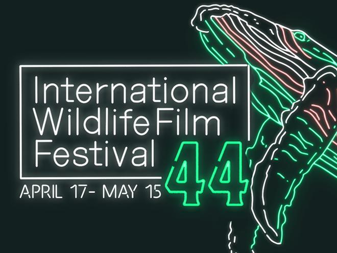 44th International Wildlife Film Festival runs virtually April 17- May 15