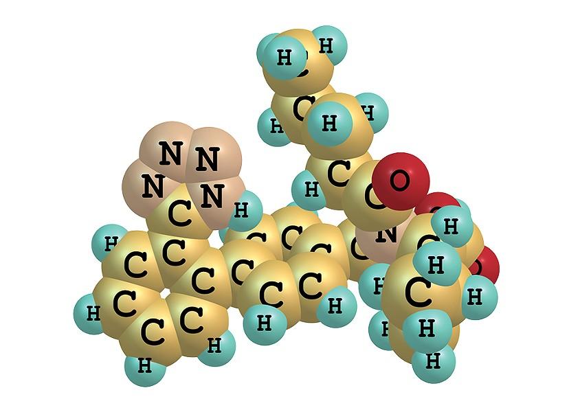 A model of the valsartan molecule