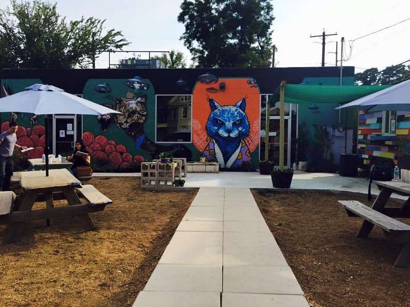 Bright murals cover the building, and a food truck on the patio keeps the food and cats separate. - BLUE CAT CAFE FACEBOOK