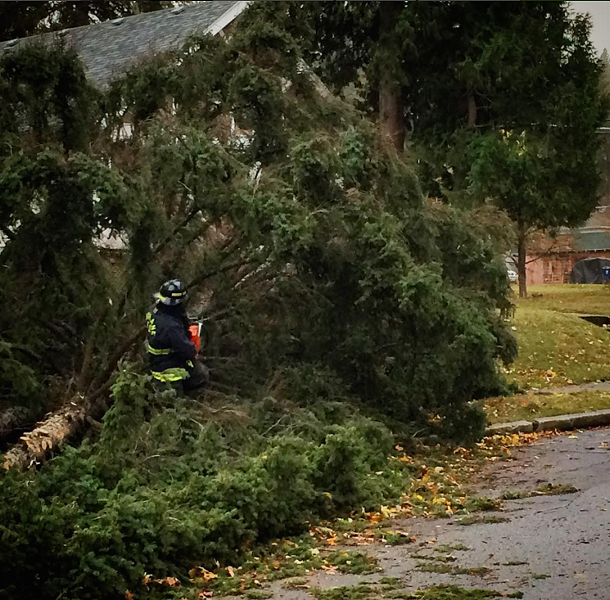A Spokane firefighter begins the work of cutting up a fallen tree at S Regal St and E 17th Ave. - YOUNG KWAK
