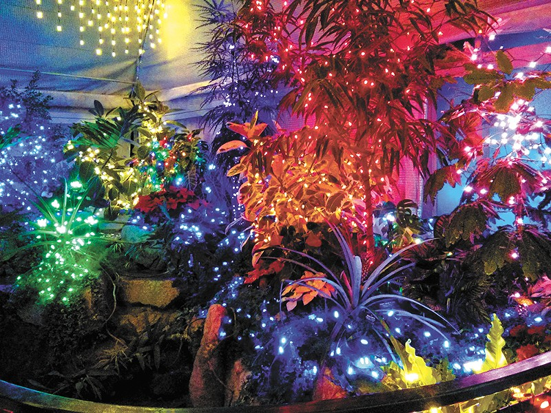 The annual holiday lights display at the Gaiser Conservatory this year is Dec. 11-20. - CHEY SCOTT