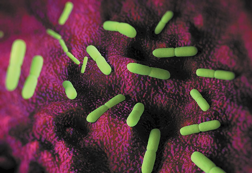 "Digital illustration of yersinia pestis, the bacteria that causes the Plague. ""Today, modern antibiotics are effective in treating plague,"" according to the Centers for Disease Control."
