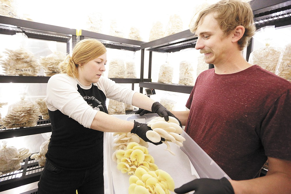Meet Two Spokane Farms Growing Several Uncommon Yet