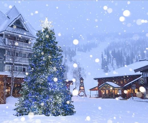 schweitzer-promo-christmasholidays-2020.jpeg