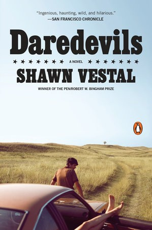The paperback cover for Vestal's Daredevils.