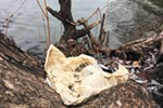 It's incredibly common to find plastic grocery bags like this one littering the shore of the Spokane River, says Riverkeeper Jerry White.