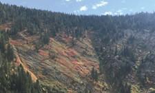 Walk Across North Idaho