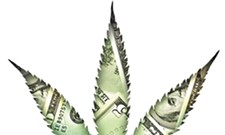 Court case will determine future of banking for marijuana industry