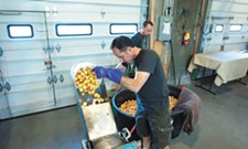 Spokane Scrumpy Cider release party