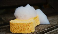 Cleaning a Dirty Sponge Only Helps Its Worst Bacteria, Study Says