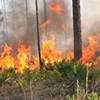 Wildfires rip through region, woman survives shooting and other morning headlines