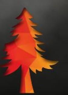 91e33fac_wildfire.jpg