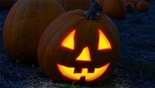 5417df7d_pumpkin-2853742_1920.jpg