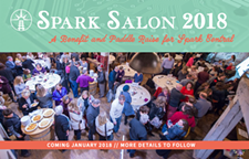 76a84c80_170123-spark_central_fundraiser_b085.png