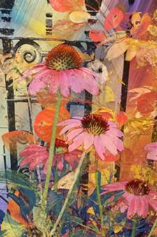 6eb9d3a9_waldman-samba_garden.jpg