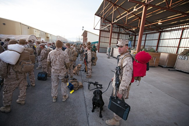 US Marine Corps First Combat Engineering Batallion Corporal Jesse Rosinski, standing next to his IED detection dog, Sergeant Mason, watches a customs briefing. - YOUNG KWAK