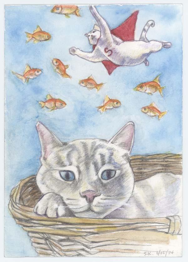 """""""Walter Kitty"""" - SHAWFAN KHAN"""