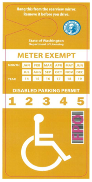 "Example of ""Payment Exempt Disabled Permit"" that could be created for those whose disabilities make it physically difficult to plug the meter."