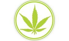 Weed Vocab 101