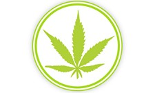 WEED WEDNESDAY: Bans, banking and pot at the symphony