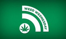 WEED WEDNESDAY: Congress's contradictory approach to pot and the children