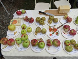 Apple & Harvest Festival