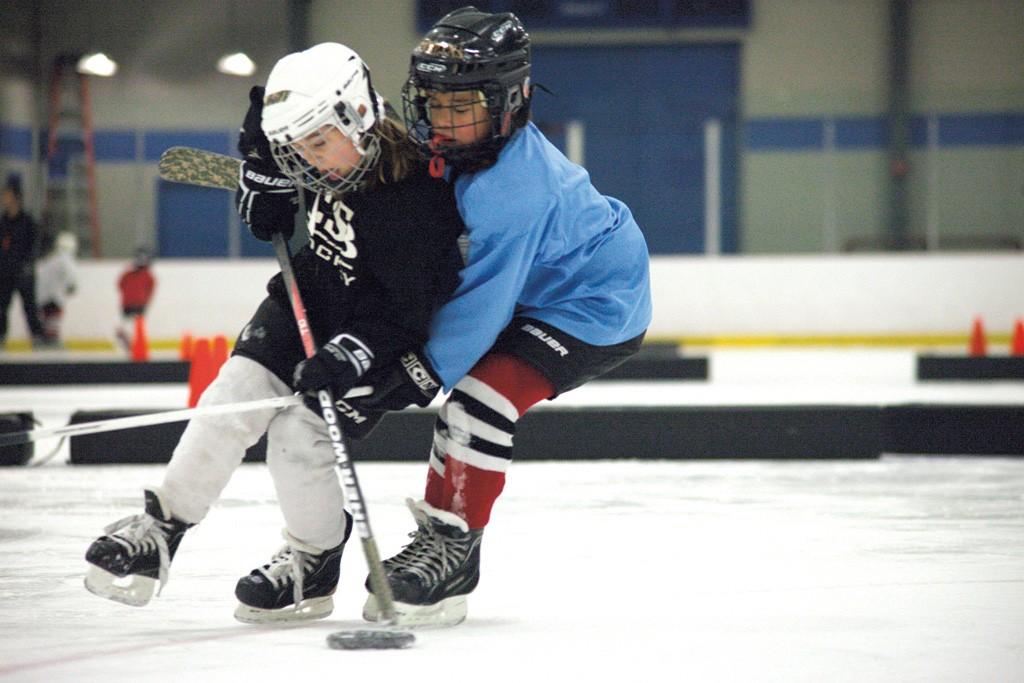 vt amateur hockey